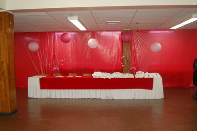 Valentine's Day Party Feb 2012 Part 2