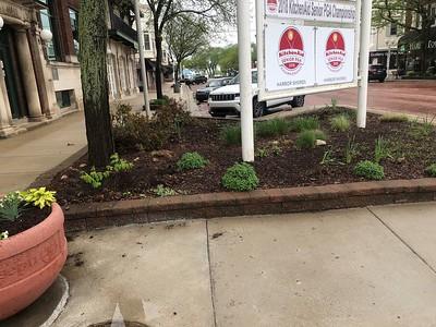 St. Joseph City, Pollinator Garden, Building - May 2018