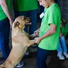 A fifth grader dances with one of the dogs at the Chuck Silcox Animal Shelter in Fort Worth. (Photo by Adrean Indolos / NTC)
