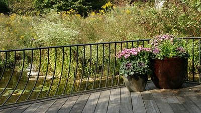 Outdoor pond and deck