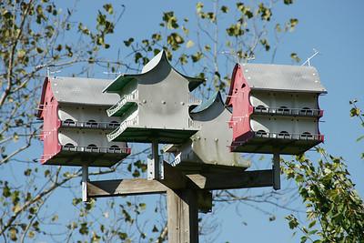 Birdhouse in Frontier Park