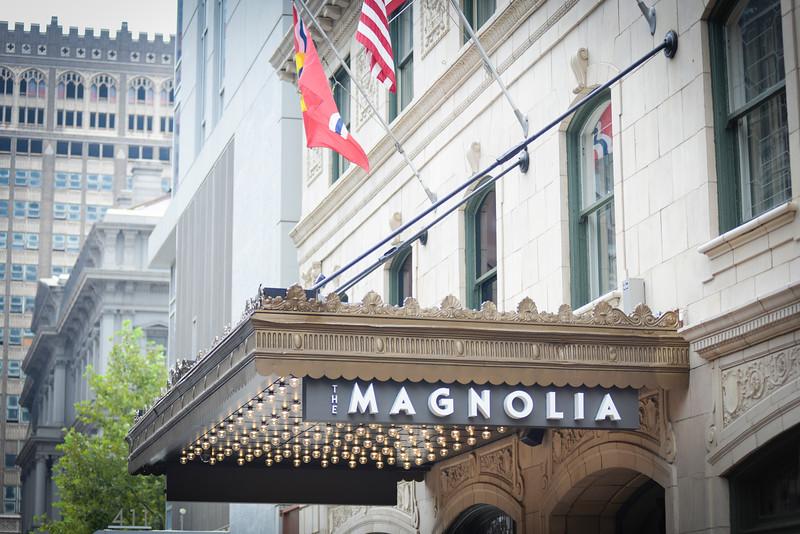 St Louis Magnolia