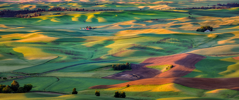 View of the Palouse from Steptoe Butte