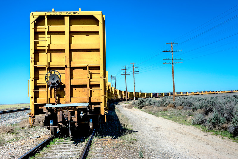TRain cars left on the tracks to rust