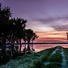 Road leads into the water sunrise Lake Lowell