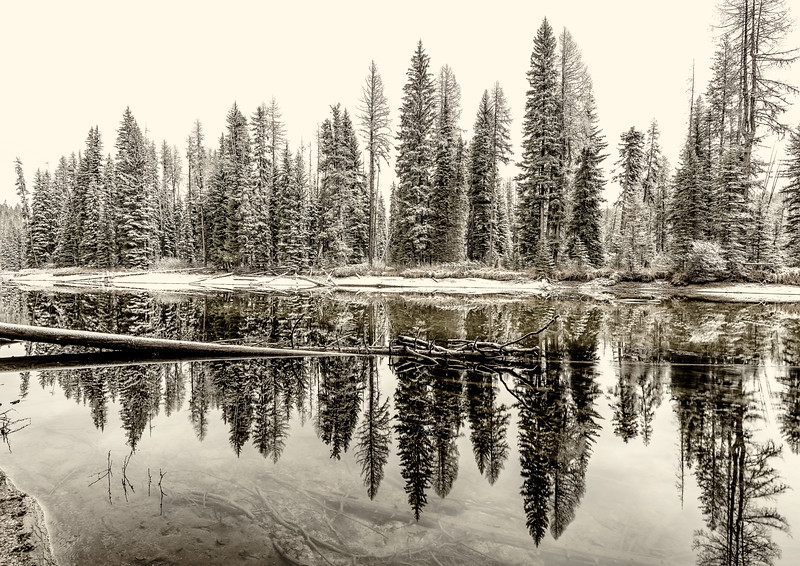 Snow covered forest along a winding Idaho river