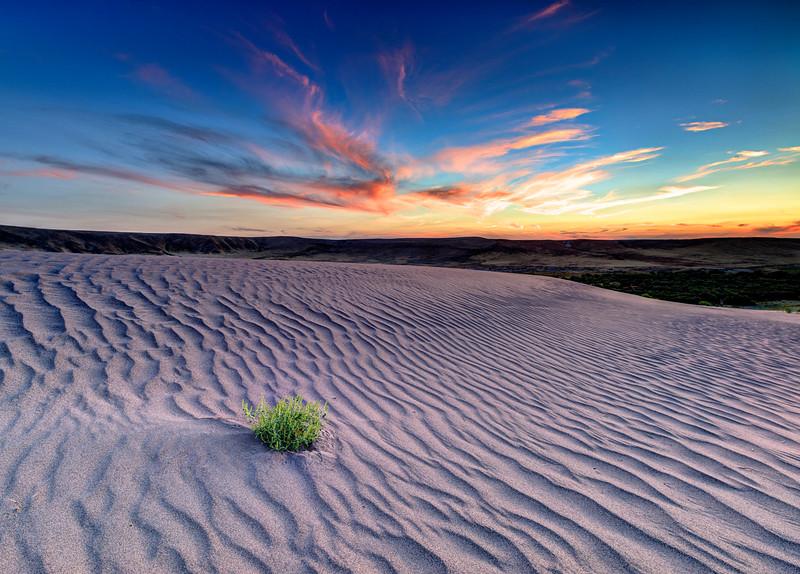 Sunset over Bruneau Sand Dunes