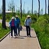 Ellen, Bud and Buster on the boardwalk across the Chesser Lake area to the viewing tower.