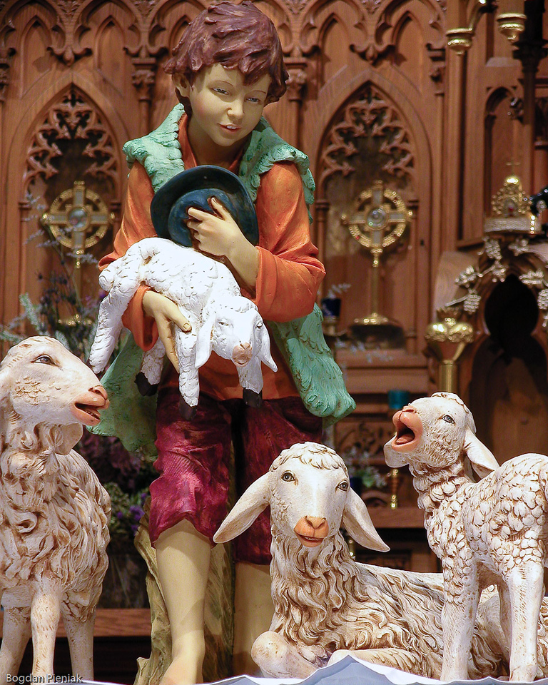 A gift of the Parish to Fr. William on his 40th Anniversary of priesthood - The Shepherd Statue for the Christmas Creche.
