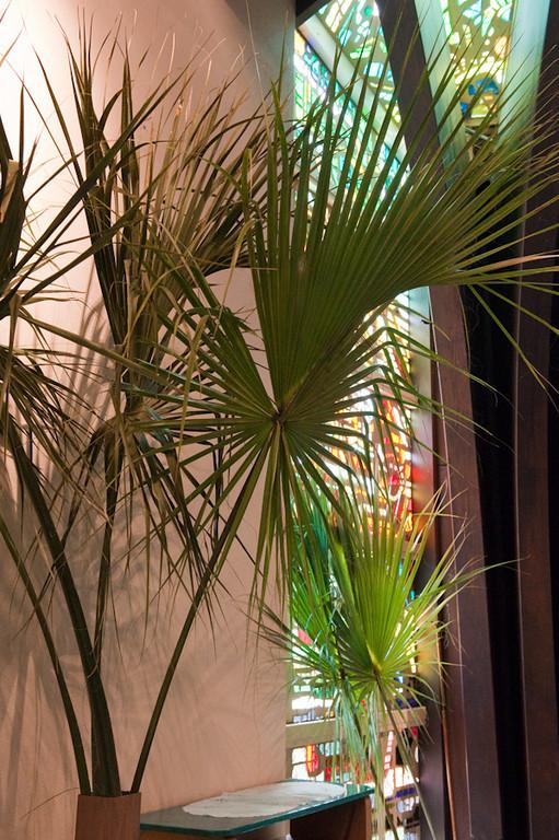 Palm Sunday-216