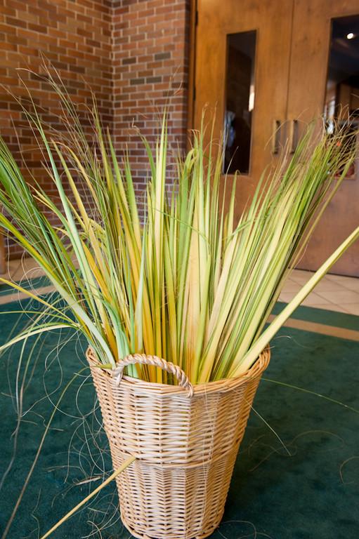 Palm Sunday-116