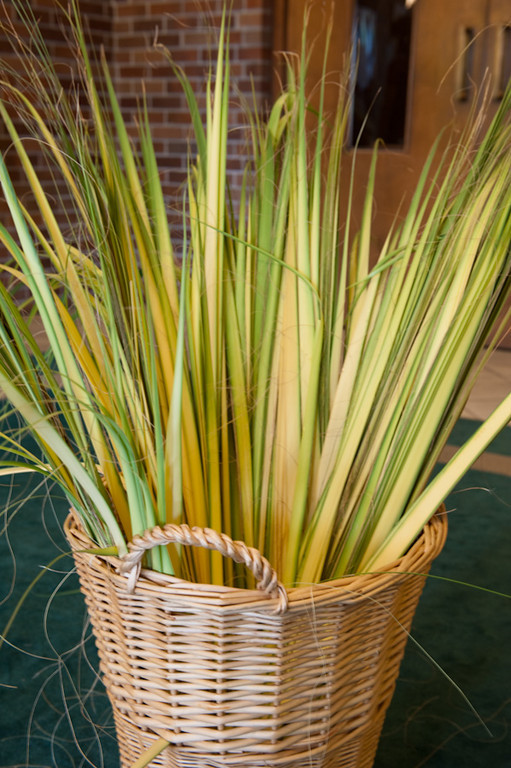 Palm Sunday-114
