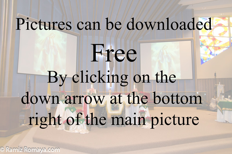Free picture down load