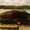 Turtle Rock at Magens bay beach, St. Thomas