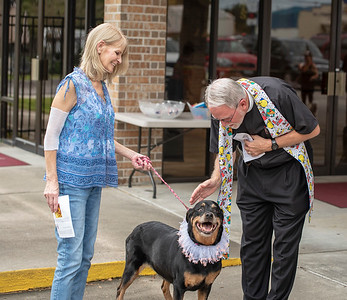 Blessing of the Animals 2018-1013