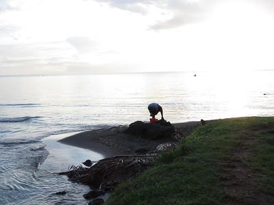 SVG.Cumberland Bay.2015