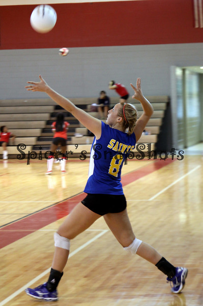 Volleyball 2009