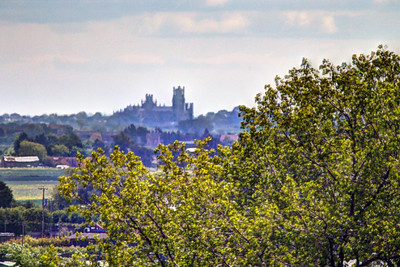 Ely Cathedral from St Wendreda's Church tower