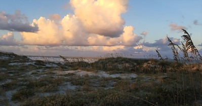 Dunes & the Sea Oats Outpost by Brianna Plant