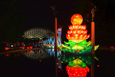 Lantern Festival - Missouri Botanical Gardens 2012