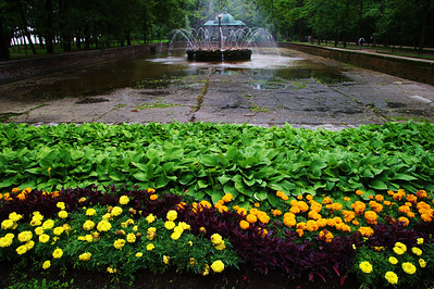 StPetersburg_Peterhof_fountain_TRA5394