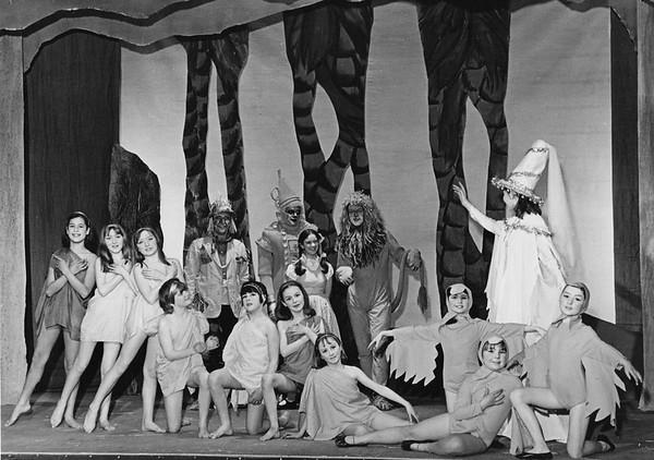 66 Wiz of Oz
