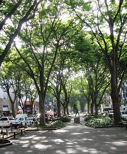 Sendai - city street