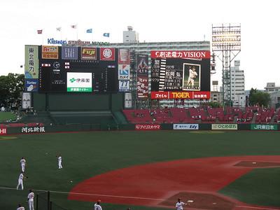 Kleenex Miyagi Stadium - outfield