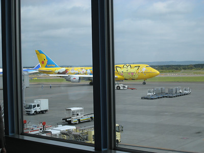 Pokeman plane, from the airport on our back to Toyko from Sapporo