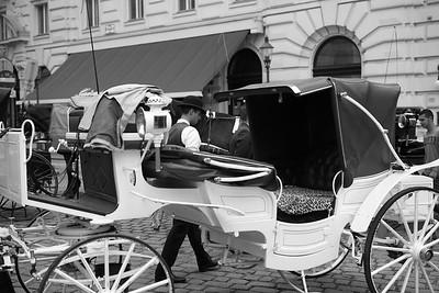 Die Verunreinigung der Wiener Innenstadt durch Pferdeäpfel der umherfahrenden Fiaker und die dadurch gegebene Geruchsbelästigung führten dazu, dass den Wiener Fiakerpferden zum 1. Juli 2004 per Landesgesetz sogenannte Pooh-Bags verordnet wurden.