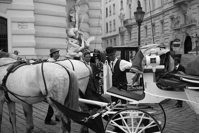 Seit 1998 ist in Wien eine spezielle Prüfung, die Fahrdienstprüfung notwendig, um einen Fiaker lenken zu dürfen. Im Rahmen dieser Prüfung werden auch Grundkenntnisse über die wichtigsten Wiener Sehenswürdigkeiten verlangt.
