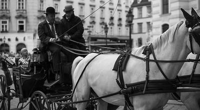 Heute verstärkt darauf geachtet, dass die Pferde regelmässig gefüttert werden und ihnen danach eine mindestens einstündige Ruhepause gewährt wird. Um dies zu dokumentieren, muss in Zukunft ein Fahrtenbuch geführt werden. In diesem sind unter anderem die Abfahrt vom Stall, Fütterungspausen und die Anzahl der Fahrten einzutragen. Strenger wird auch die Fiakerprüfung selbst, die Kutscher müssen in tierschutzrelevanten Aspekten noch sattelfester werden.