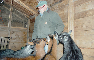 Dick Cummings, of New Harbor, treats his four goats, Jenny, Penny, Lenny, and Kenny, just like they were his kids. (E. Elliott photo)