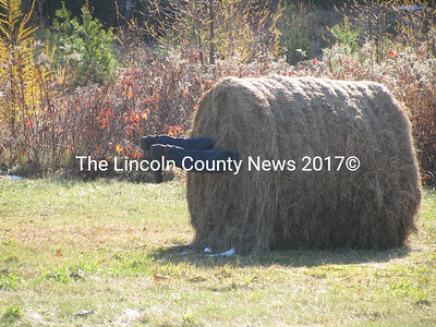 This farmer stuck in a hay bale was spotted off Rt. 105 in Somerville. (J Maguire photo)