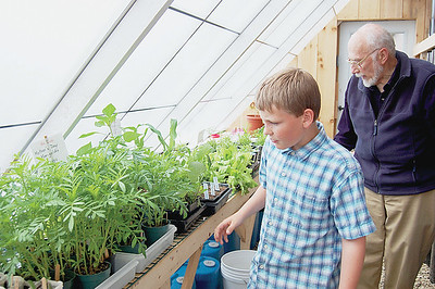 Adam Leeman, 11, a 4th grader at the Great Salt Bay School, shows off the garden plants already flourishing in the Solar Greenhouse that was donated and built by Bob Hardina (right) and a volunteer crew of parents and teachers. Adam has a green thumb, teachers say.(Joe Gelarden photo)