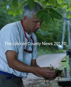 DEP biologist John McPhedran, examines the invasive plant Hydrilla, found in a small cove in Damariscotta Lake last week.