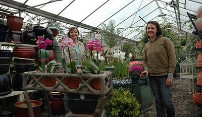 Kathleen Kennedy (left) and Kim Michel are readying spring flowers at Cottage Gardens on Damariscotta's Church Street. (Joe Gelarden photo)