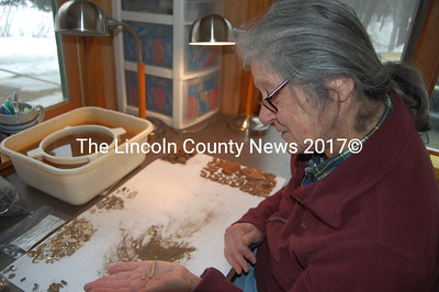LCN 3-23-11 - lincolncountynews