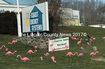 Mid-Coast Energy Systems, Inc. on Rt. 1 in Damariscotta was flocked last week. (Laurie McBurnie photo)