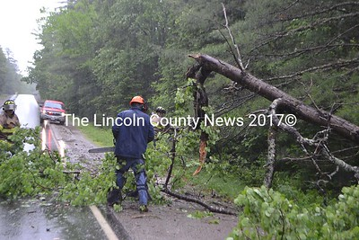 Alna Fire Dept. members clear away a tree downed in the rainstorm June 3. (H. Perkins photo)