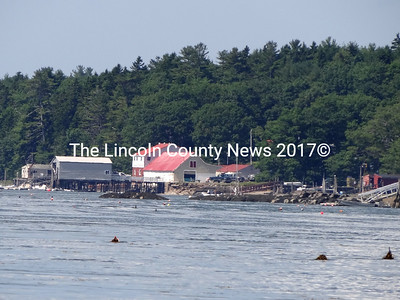 Broad Cove Marine Services, on left, and Medomak Shellfish, far right, are just two of the waterfront companies that provide services to fishermen in Bremen and buy and sell lobsters and other sea products. (Shlomit Auciello photo)
