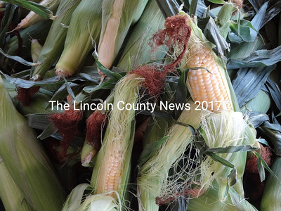 Like many crops this year, corn is early at County Fair Farm. Farmer Sue Williamson said the crop should continue to yield into the fall. (Shlomit Auciello photo)