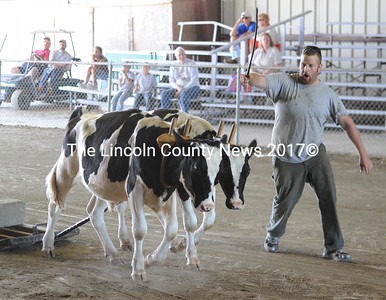 Isaiah Chase, of Whitefield, drives his young set of steers at the Union Fair on Monday. (Paula Roberts photo)