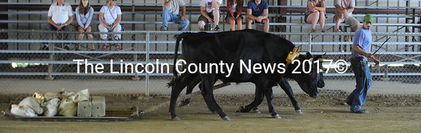 Dan Orff, of Somerville, leads his team of steers in pulling competition at the Union Fair on Monday. (Paula Roberts photo)