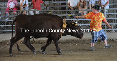 Teamster Megan Orff, of Jefferson, leads her steers Red and Bull to first place at Union Fair on Monday. The cattle belong to MegFra Farm in Jefferson.  (Paula Roberts photo)
