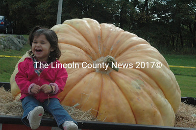 Eiva Chavez, 2, enjoyed sitting by Charlie LoPresti's Giant pumpkin at over 1000 pounds, which was destined to destroy a vehicle in the 180 foot drop. Eiva, from Rochester, N.H., was there to cheer on her Grandpa, who operated the crane to drop the pumpkins. (Eleanor Cade Busby photo)