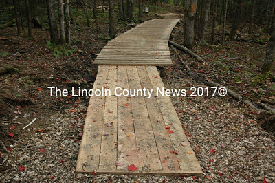 The members of the public works crew often have carpentry or other skills, which crew supervisors use to tackle special projects, like building this bridge on the YMCA trail. (J.W. Oliver photo)