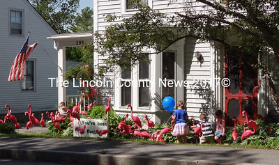 Jan Minzy's home on Jefferson Street was invaded by pink flamingos just in time for Waldoboro Day. The flocking is part of a fundraiser to supports the Waldoboro Fire Dept., the Waldoboro Firemen's Association, and the department's 175th anniversary celebration to be held Friday, Aug. 9 through Sunday, Aug. 11. (Shlomit Auciello photo)
