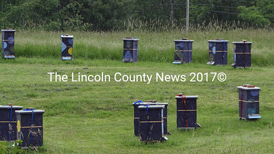 Dark colors help keep heat in the hives at Overland Apiary at the Jackson Farm in Jefferson. (Shlomit Auciello photo)