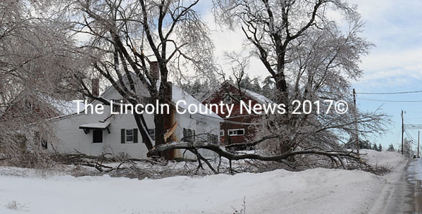 Ice brought this large limb down in North Whitefield. (Paula Roberts photo)